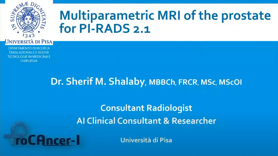 Multiparametric MRI of the prostate for PI-RADS Classification and the ProCancer-I project